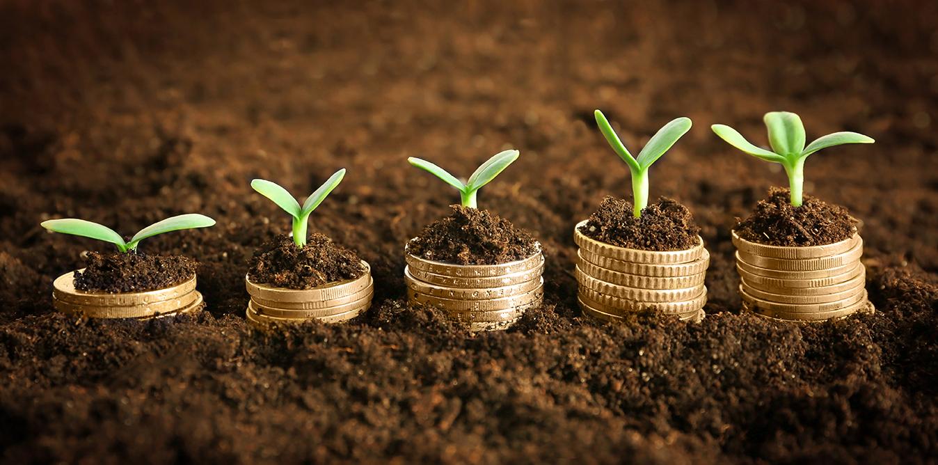 Ekosysteemikin tarvitsee toimivan bisnesmallin